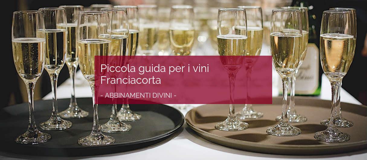 Piccola guida per i vini Franciacorta